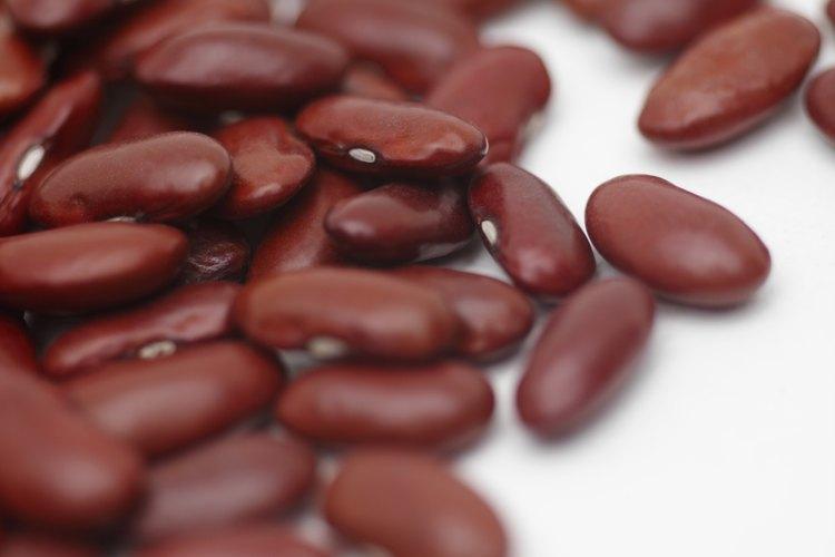 Los frijoles colorados no contienen levadura.