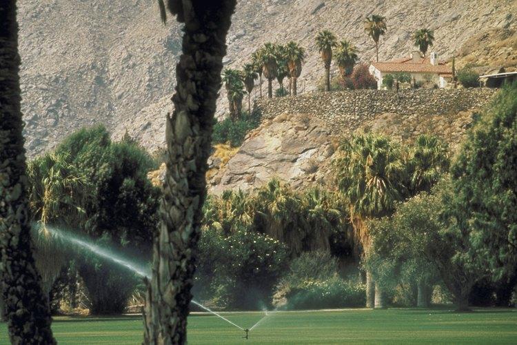 Palm Springs ofrece un oasis de golf en el desierto.