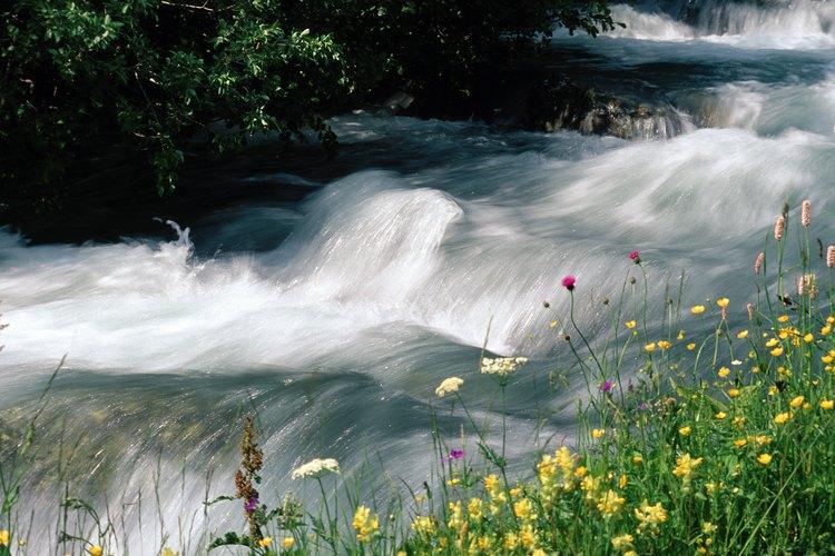 México tiene 33 regiones hidrológicas.