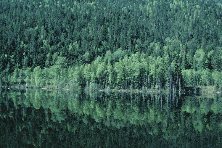 El Okanagan Valley, British Columbia, es vistoso y remoto.