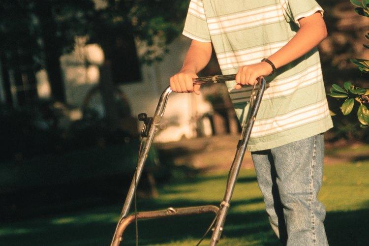 Las cortadoras autopropulsadas a combustible hacen gran parte del trabajo al cortar tu césped.