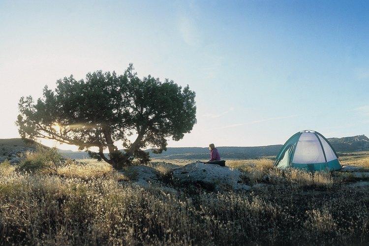 Colorado cuenta con una amplia gama de campamento disperso, incluso en la ciudad de Bayfield.