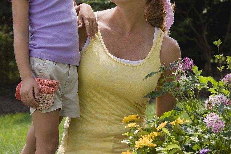Enseña a los niños conceptos de jardinería con actividades sobre plantas.