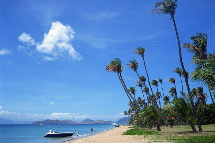 St. Kitts y Nevis son parte de las Antillas Holandesas.