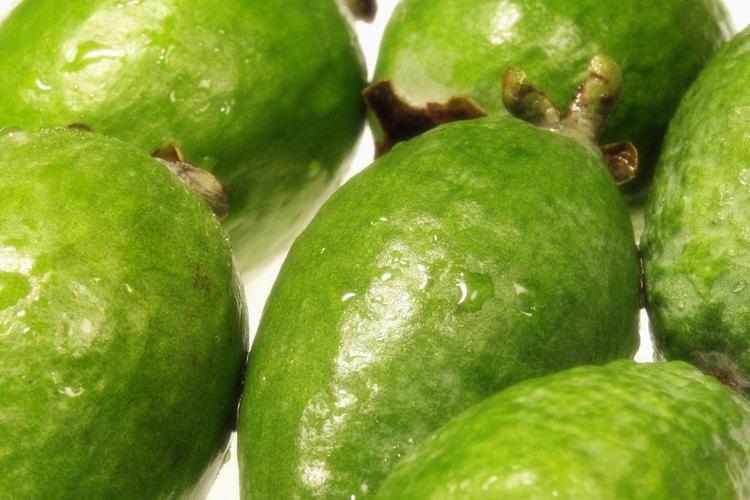 La guayaba es una fruta con forma de pera.