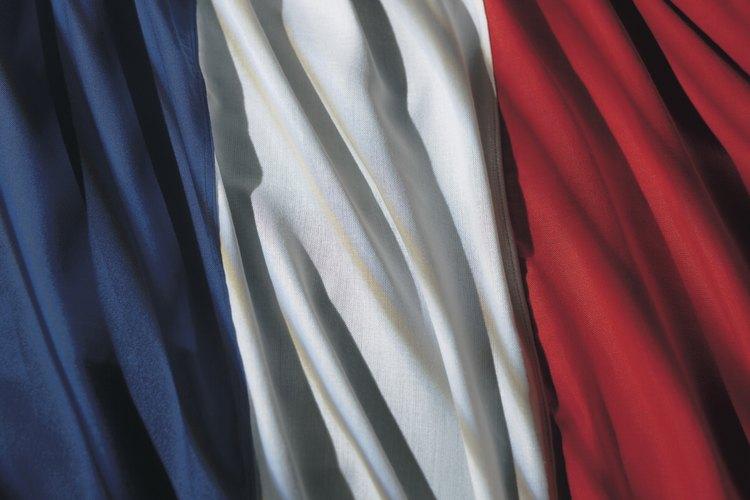 Francia opera con un sistema semi-presidencial.