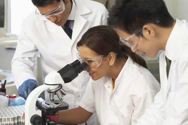 Los recursos tecnológicos son uno de los factores que coloca a las universidades de Brasil en una posición privilegiada.