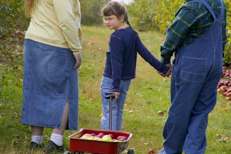 Visita un huerto para recoger manzanas frescas en el día de Johnny Appleseed.