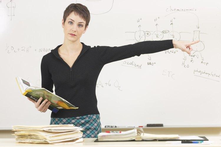 Los profesores adjuntos realizan las mismas tareas que los profesores de tiempo completo.