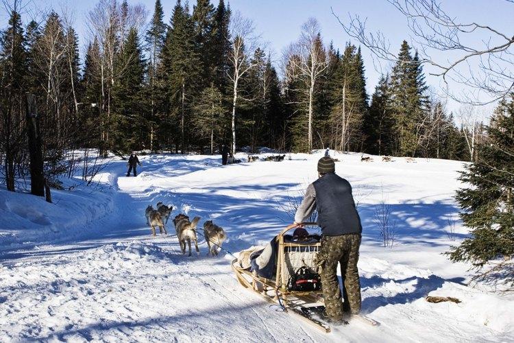 Un meteorólogo puede especializarse en una temporada en particular, como el invierno.