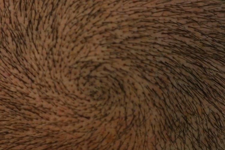 Los remolinos frecuentemente se mueven en espiral alrededor de un punto central, lo que hace que peinarlos resulte difícil.