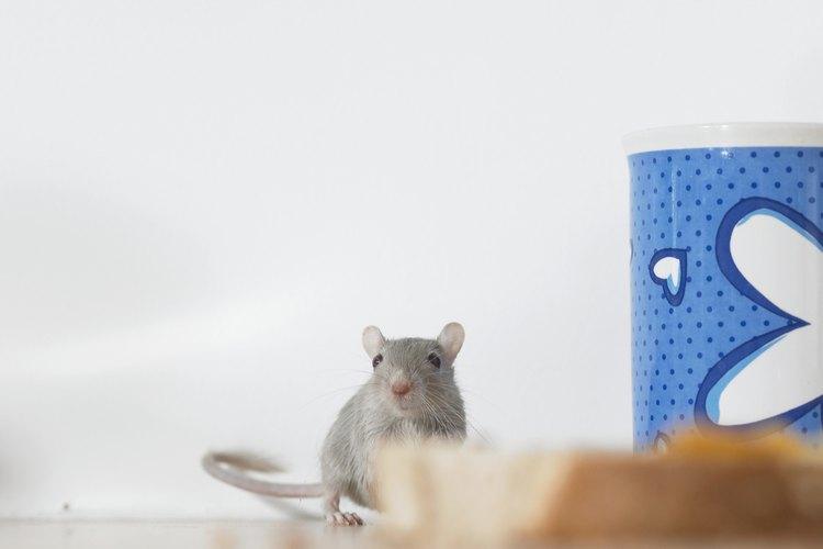 Evita que los ratones mastiquen el cableado eléctrico.