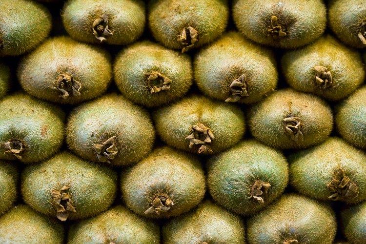 Los kiwis saben bien pero, ¿qué tipo de fruta son exactamente?
