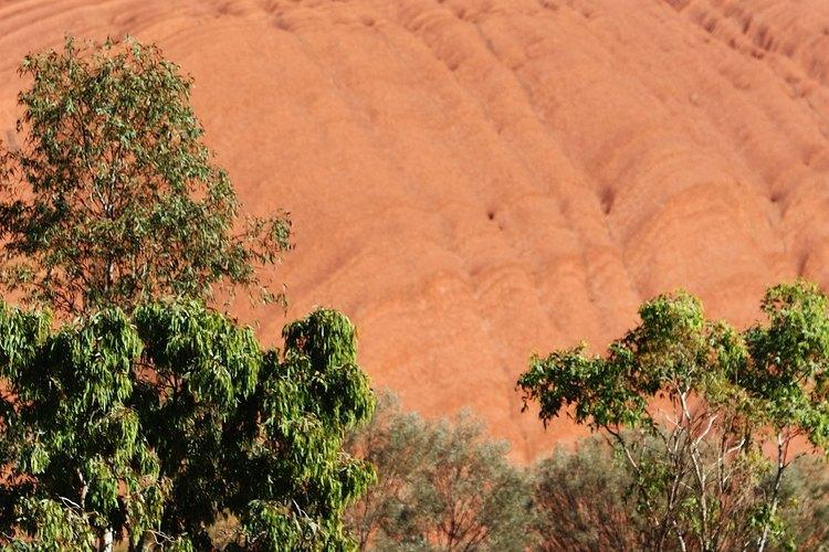 Rodeando la base de Uluru revela la compleja composición de la roca.