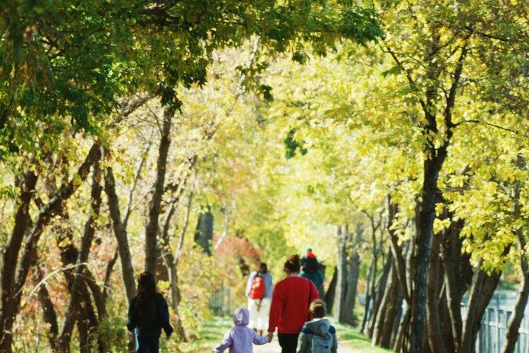 Tú y tus niños hallarán muchas cosas para hacer en Hoboken, desde parques hasta zoológicos.