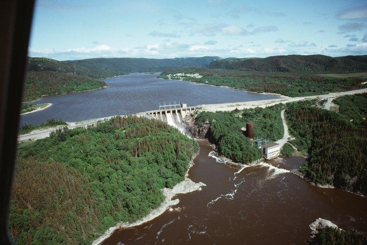 Su hábitat natural incluye pantanos, ciénagas, humedales y canales.