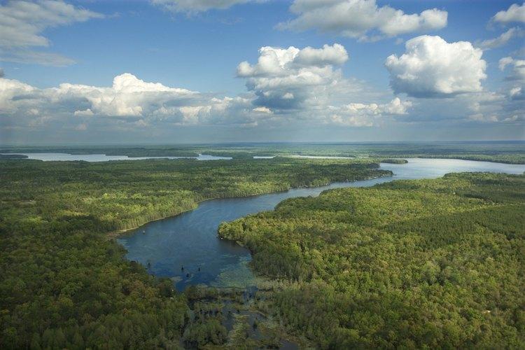Se puede acampar en tienda de campaña en algunos de los paisajes más salvajes de Florida.