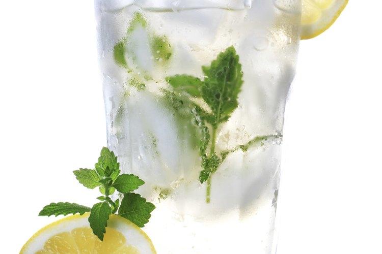 Un vaso de agua con cubos de hielo y limón.