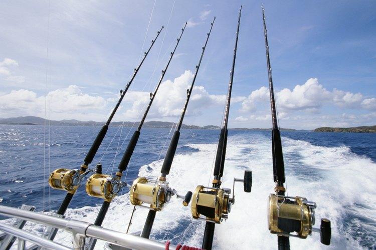 Se requiere una licencia de pesca vigente del estado de California para pescar en cualquiera de sus zonas.