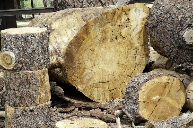Es importante recordar que tienes que quitar el moho, no sólo matarlo; tienes que frotar la madera y no sólo desinfectarla.