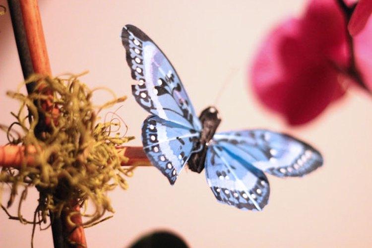 Añade una mariposa decorativa.