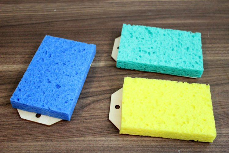 Coloca una esponja húmeda sobre el papel.