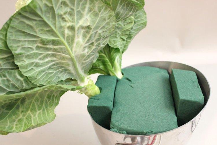 Inserta las coles dentro de la espuma floral.