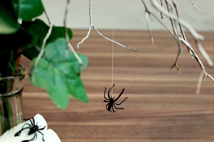 Cuelga una araña de un hilo.