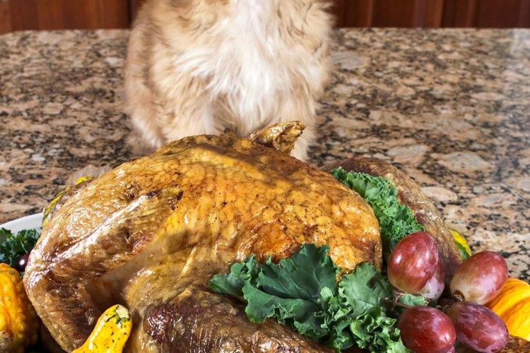 Comparte alimentos saludables de tu mesa de Acción de Gracias pero con moderación.