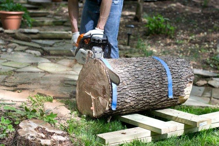 Recorta el extremo irregular del tronco.