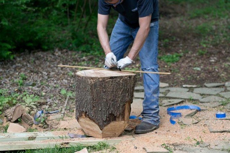 Da vuelta el tronco y traza las líneas.