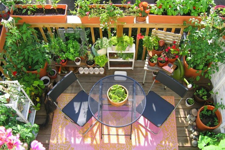 Tener un huerto en tu balcón es una hermosa experiencia natural.