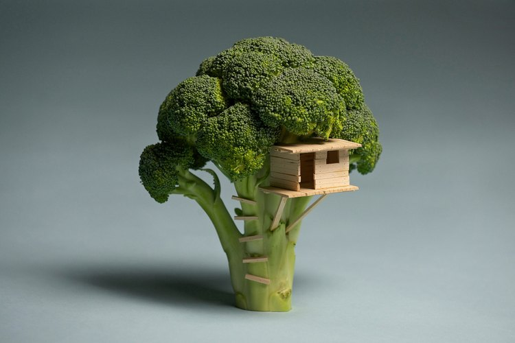 Cultiva brócoli en tu casa.