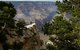 Jeep & Safari Tours in the Grand Canyon