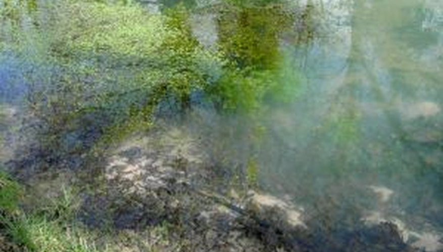 You can remove unattractive or damaged garden ponds.