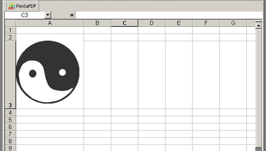 Pictures can be inserted into Microsoft Excel worksheets.