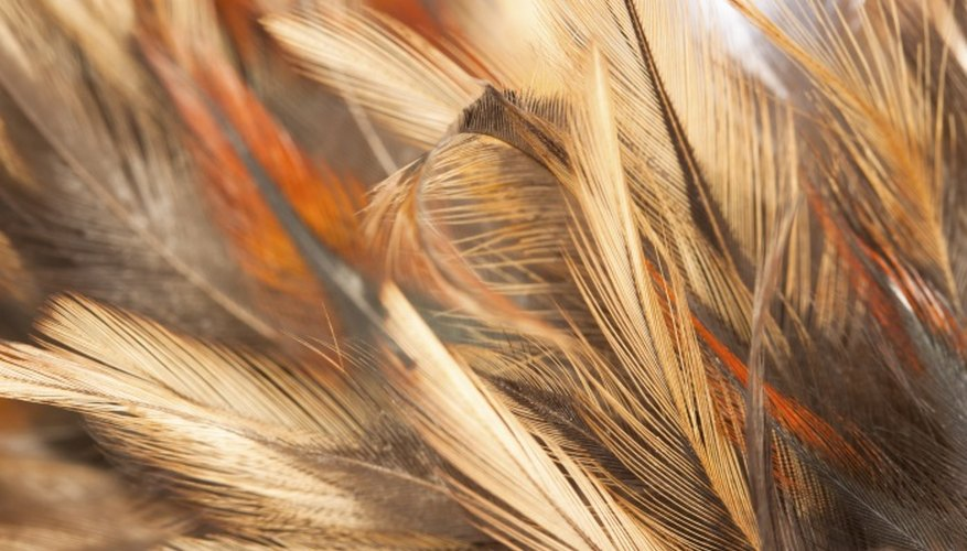 Delicate feathers can be damaged in sterilisation processes.