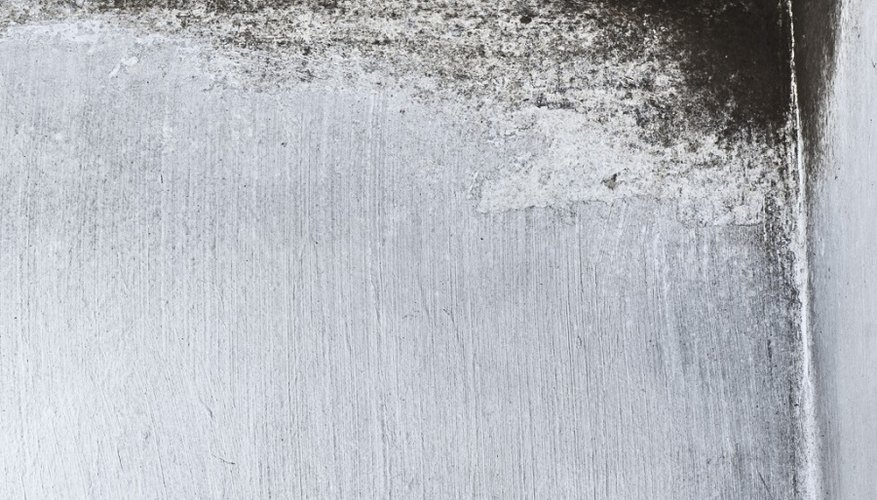 Mold growth occurs when mould spores travel to an area that has ideal conditions: moisture and warmth.
