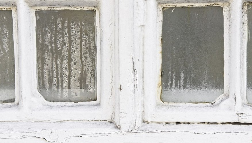 Sill rot can easily spread to the adjacent window frame.