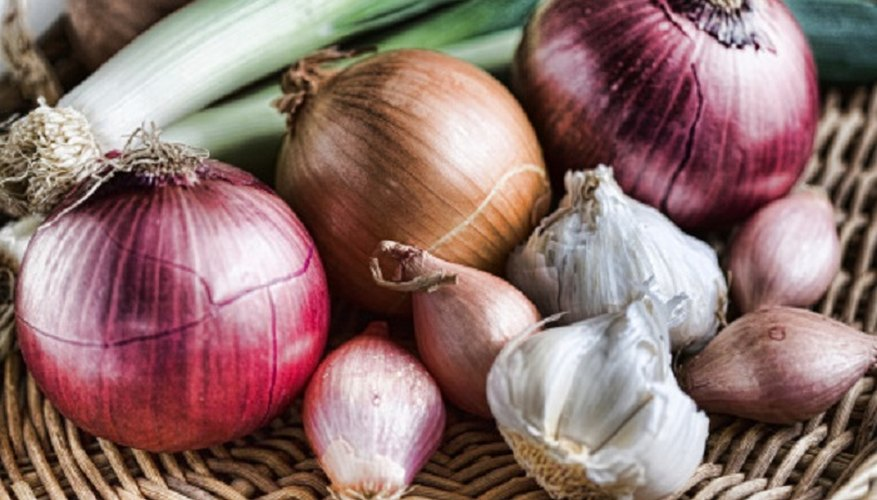 Red onions are easily identified by their deep red-coloured skin.
