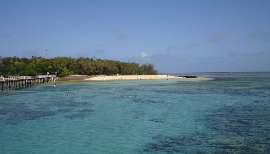 Reefs protect shorelines.