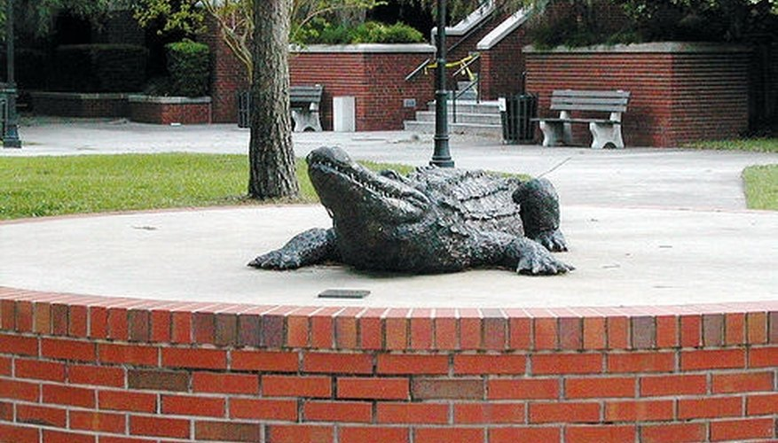The University of Florida is the heart of Gainesville.