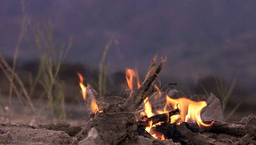 Review camping and survival basics with this challenging game.