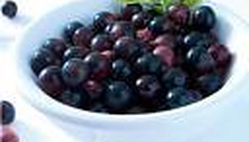 Acai berry is a fruit of the Amazon.
