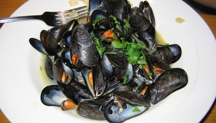 If you cannot eat all your mussels, refrigerate them for later.
