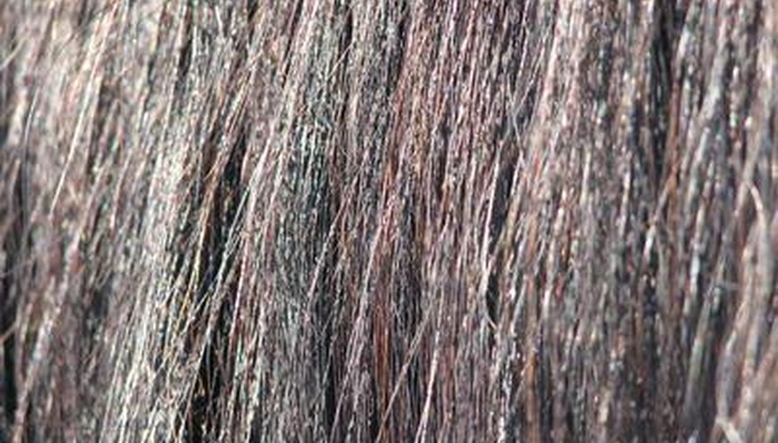 Using hair from a horse's tail is said to cure warts.