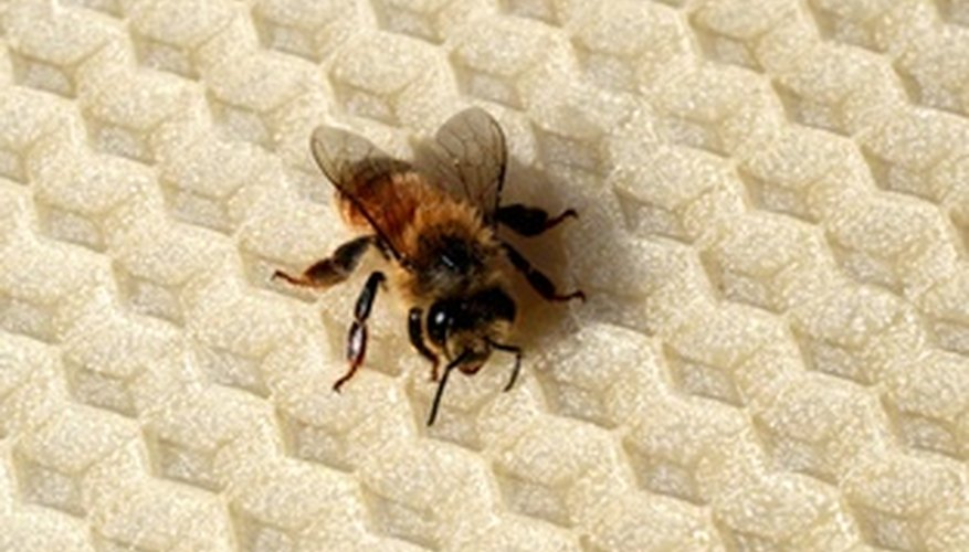 Beeswax coats fabric so dyes don't penetrate.