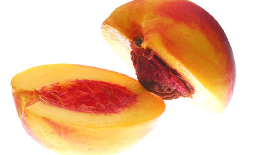 Nectarine seeds must sprout in cold temperatures.