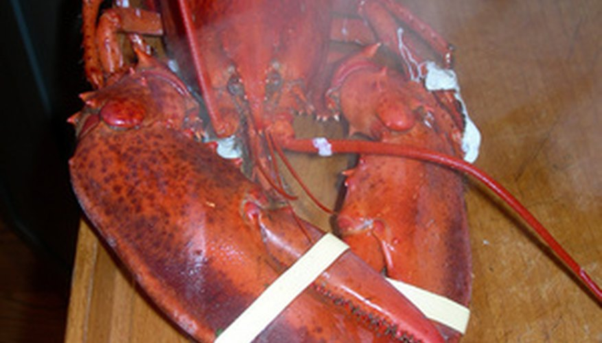 Lobsters come in a wide range of sizes so reheating times vary.