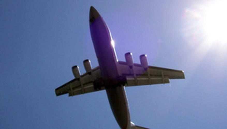 International flight attendants are trained in passport and customs regulations.